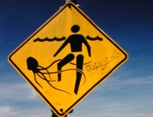 Sign on beach in Australia. Credit: Dr. Jamie Seymour, James Cook University